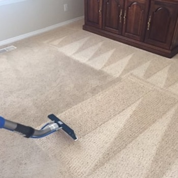 knoxville carpet cleaning services