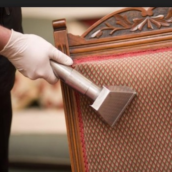 knoxville upholstery cleaning services